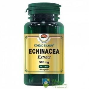 Echinacea Extract 500 mg 60 capsule - stimuleaza sistemul imunitar