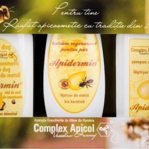 SET CADOU CASETA APIDERMIN COMPLEX APICOL